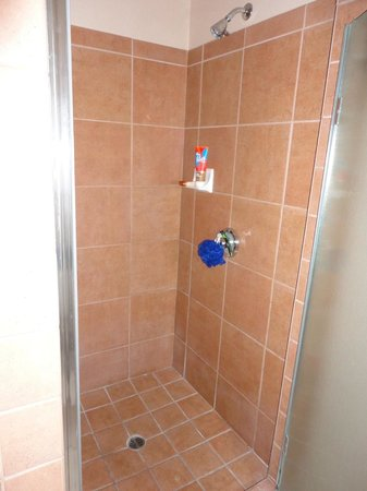 Inn at Eagle Mountain: shower stall
