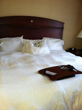 Hampton Inn Tremonton: Room