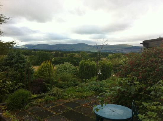 Cherry Tree Lodge: From the Decking Patio