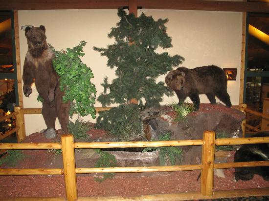 Great Wolf Lodge : Lobby