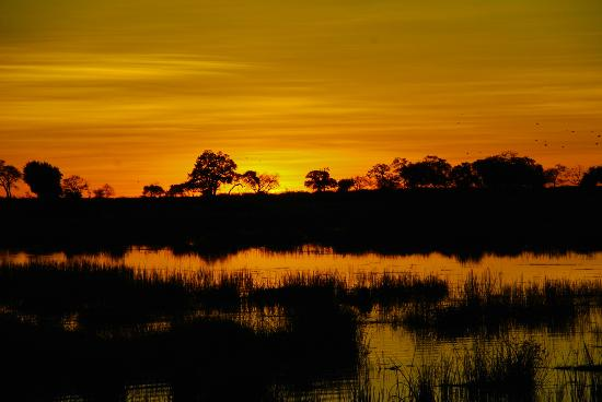 Wilderness Safaris Kings Pool Camp: beautiful sunsets !