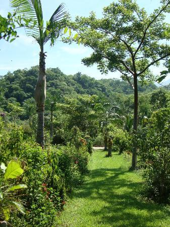 Guide to puerto vallarta outdoors travel guide on tripadvisor - Puerto vallarta botanical gardens ...