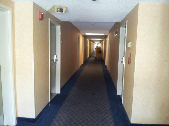 Days Hotel Oakland Airport: Hall. Needs a renovation