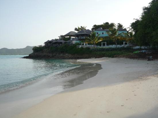 Cocobay Resort: a view of cocobay from their beach