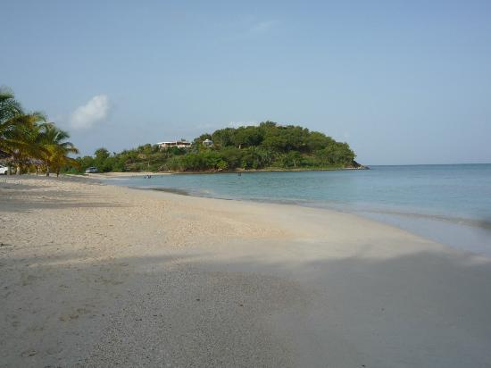 Cocobay Resort: a view from cocobay to dennis' bar