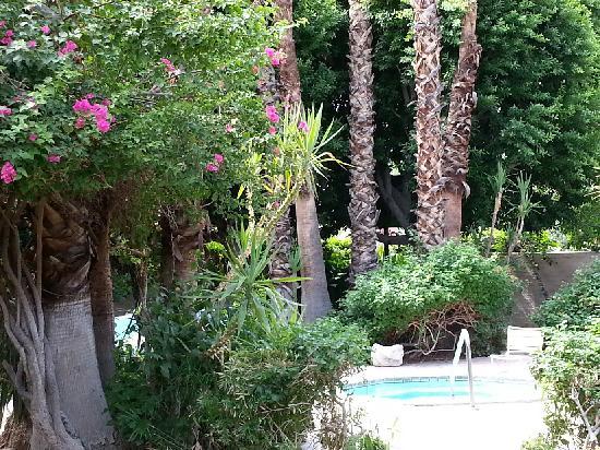 Villa Royale Inn: outside our room
