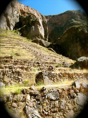 Llama Pack Backpacker: Ruinas sagradas cercanas / Nearby sacred ruins