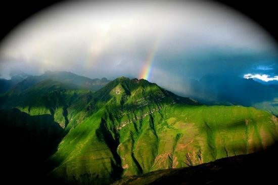Llama Pack Backpacker: Temporada de Arcoiris / Rainbow season