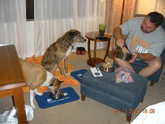 Loews New Orleans Hotel: Ruff service!