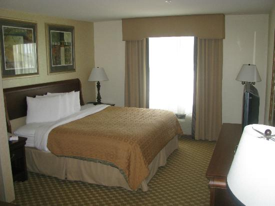 Country Inn & Suites By Carlson, Athens: King Size Bed in Room 410