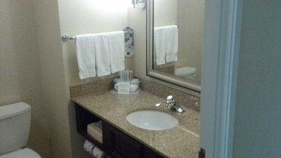 Holiday Inn Express Hotel & Suites Youngstown W - I-80 Niles Area: The Bath Room
