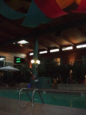 Best Western Plus Coquitlam Inn Convention Centre: プール