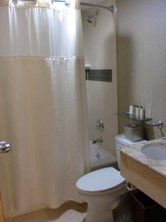 Doubletree Hotel Chelsea - New York City: Small bathroom, but this is not the smallest.
