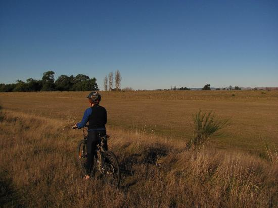Two Tree Lodge: Why not hire one of our bikes, and explore the stunning local area
