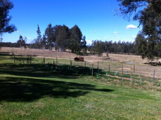 Hunter Valley Resort: View from our sliding door