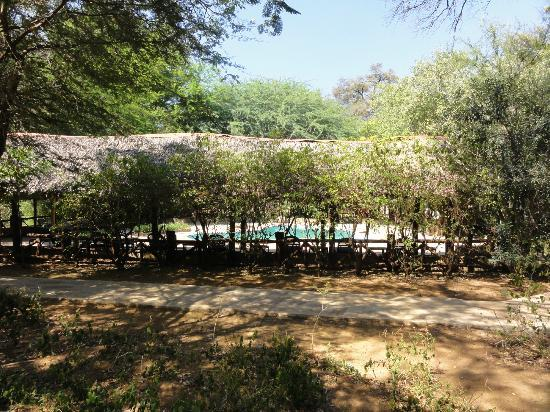 Samburu Intrepids Luxury Tented Camp: wonderful surroundings