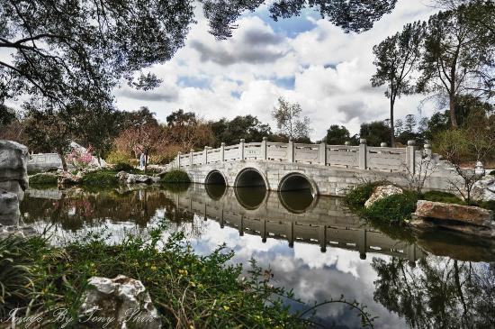 Charmant The Huntington Library, Art Collections And Botanical Gardens: Bridge At  The Chinese Garden