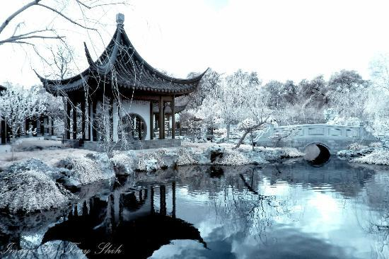 The Huntington Library, Art Collections and Botanical Gardens: Liu Fang Yuan, the Garden of Flowing Fragrance