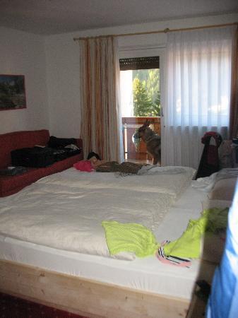 Hotel La Pineta: stanza
