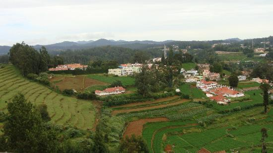 Sterling Ooty Elk Hill: View from our Deluxe Suite