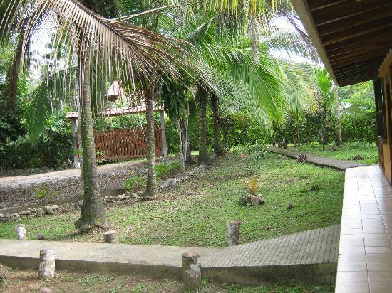Cabinas Caribe Luna: the garden