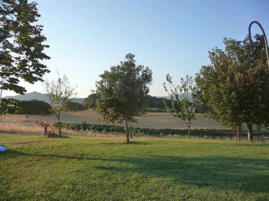Agriturismo San Carlo: landscape - landschaft um's Haus