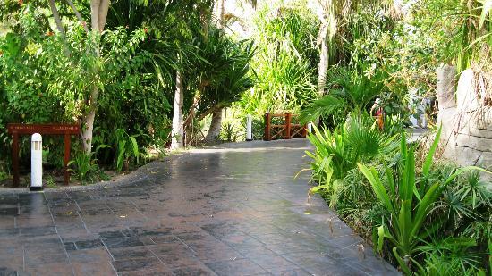 Dubai Marine Beach Resort and Spa: Viali interni