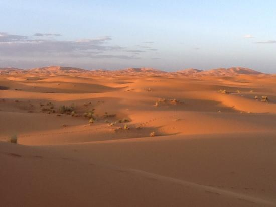 Le Chevalier Solitaire: le dune