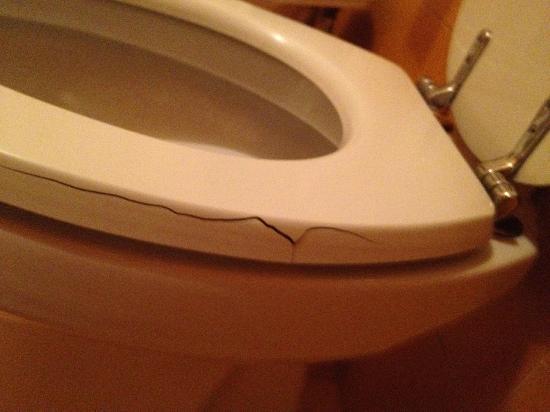 Castelvecchio  Aparthotel: Broken WC