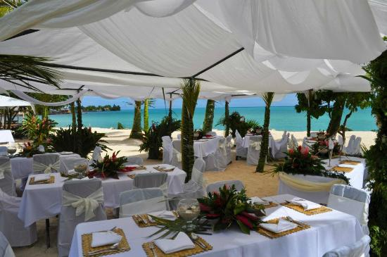 Le Vasa Resort: Our Reception Set Up... Beautiful right!!