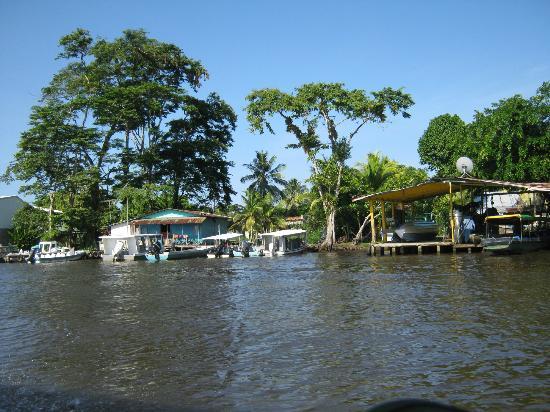 Cabinas El Icaco Tortuguero: cahuita downtown