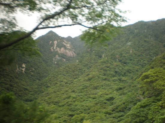 Seibu Trail : 深い谷底