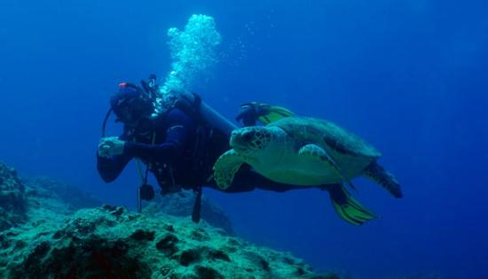 Dragoman Diving Centre: Murat and a friendly turtle, or is it: friendly Murat and a turtle?