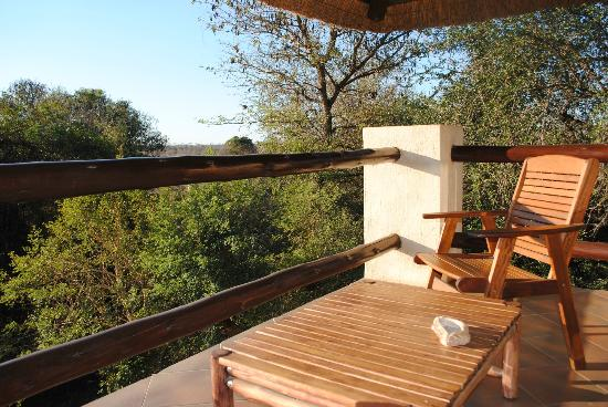 Bushwise Safaris: view from room 3