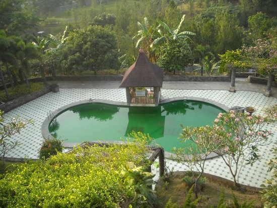 Rainforest Wattana Hotel: swimming pool