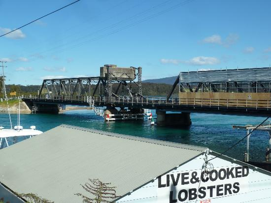 Tuross Beach Holiday Park: The place to buy fresh fish - Narooma