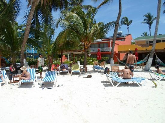 Cocoplum Beach Hotel: Pool/Strandbereich