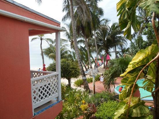 Cocoplum Beach Hotel: Zimmeraussicht1