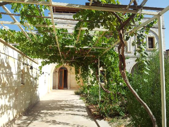 Walnut House Hotel Goreme : Giardino interno