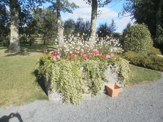 Domaine de la Tour : the pretty garden
