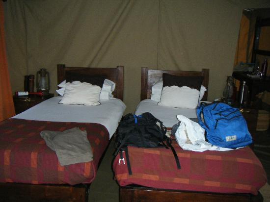 Dunia Camp, Serengeti: #4