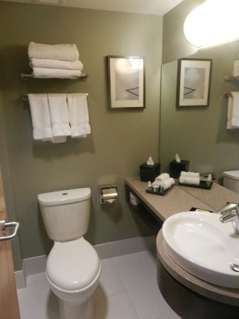 Hotel Alma at the University of Calgary: Bathroom
