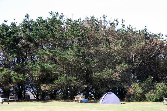 Garrison Campsite & Holiday Cottages: Even when its busy you have loads of space