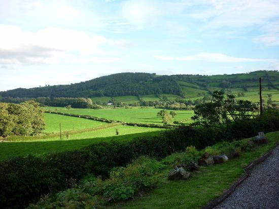 Plas Uchaf Country Guest House: Superb view of the Tanat Valley, Powys