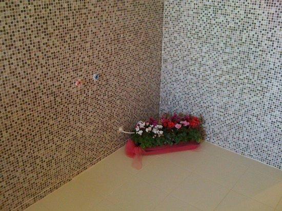 Belvedere Hotel: Λουλουδια αντι για υδρομασαζ...