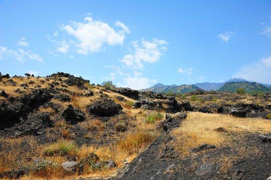 Nicolosi, Italy: volcanic landscape