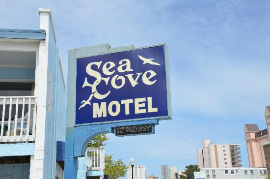 Sea Cove Motel : Sign