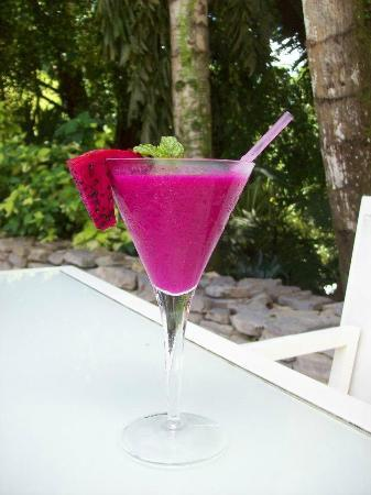 Belcampo Lodge: Tim's pitaya drink