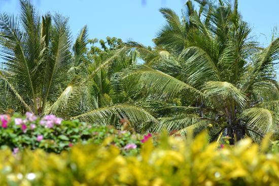 Kenga Giama Resort: Kenga Giama House