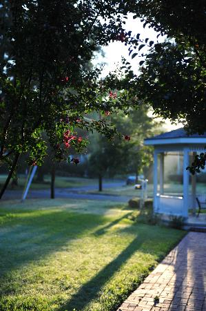 Delta Street Inn: Morning sun